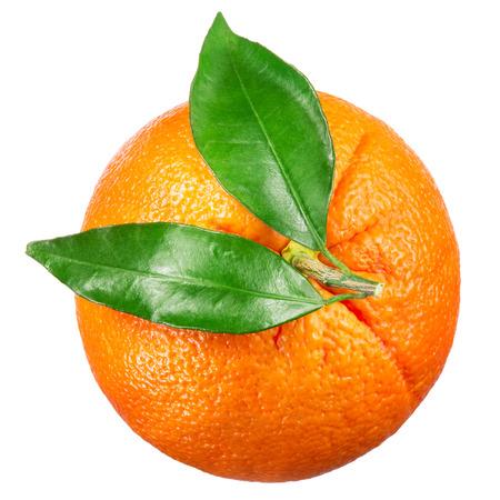 naranja fruta: Fruto de naranja con hojas aisladas en blanco. Vista superior. Foto de archivo