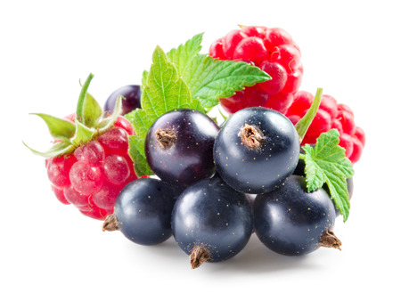 black currant: Berries. Black currant with raspberry isolated on white Stock Photo