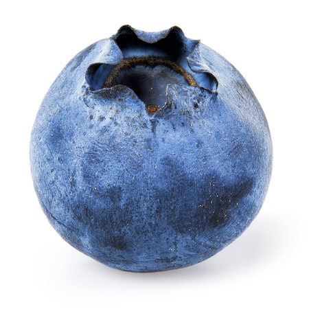 Blueberry. One bilberry isolated on white. 스톡 콘텐츠