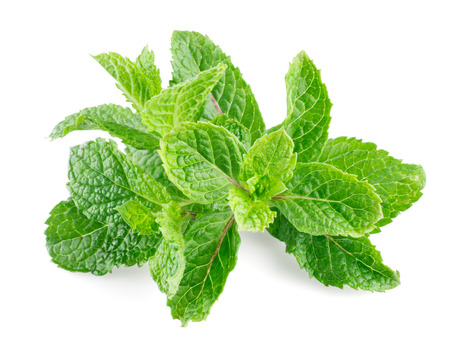 mint leaves: Mint leaves isolated on a white background Stock Photo
