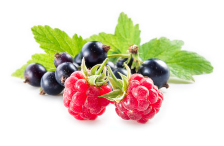 black currant: Black currant with raspberry with leaves isolated on white