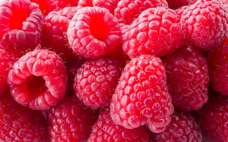 Fresh raspberry. Red background