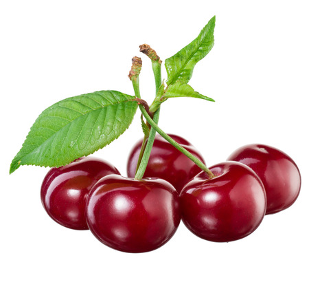 sour cherry: Cherry isolated on white Stock Photo