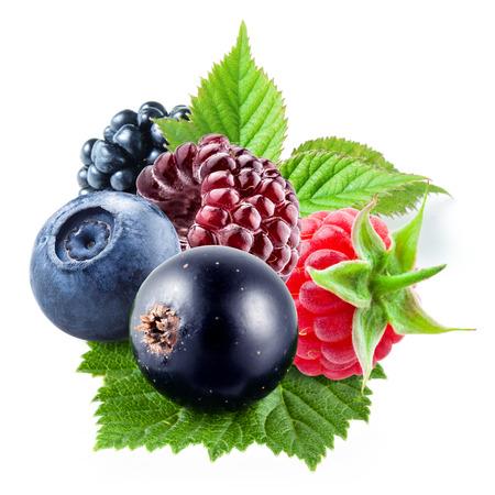fresa: Bayas con hojas sobre un fondo blanco