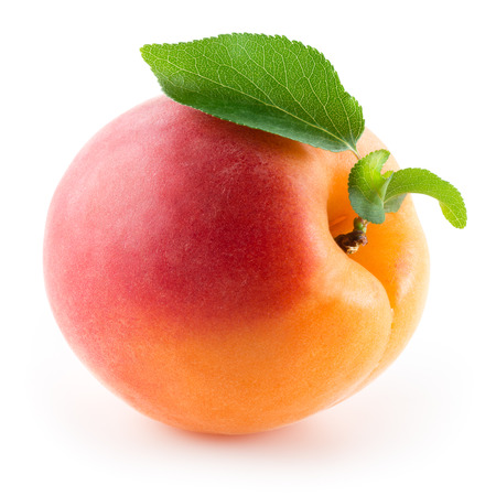 Apricot. Fruit with leaf on a white background.