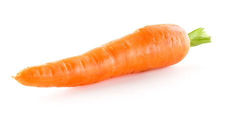 carrot: Carrot isolated on white background Stock Photo
