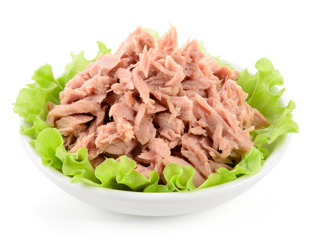 Canned tuna with green salad on white