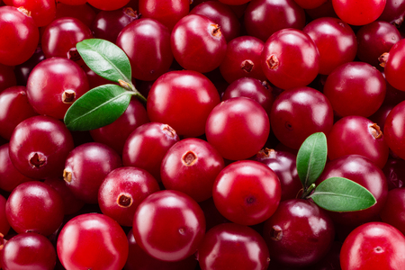 Cranberry with leaves macro. Background.