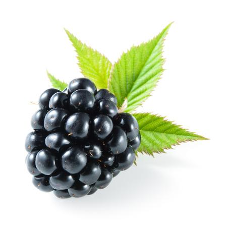 blackberries: Blackberry isolated on white.