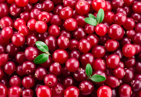 Fresh ripe cranberry in water. Red berries with drops. Food back