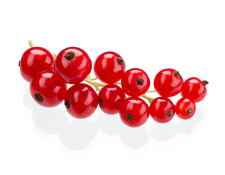 currants: Red currants isolated on white