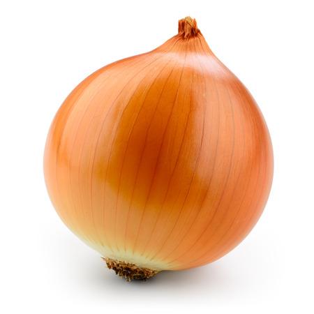 cebolla: bulbo de cebolla fresca aislado en blanco. Con trazado de recorte. Foto de archivo