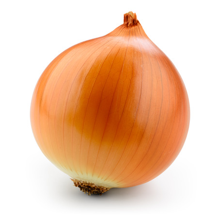 Fresh onion bulb isolated on white. With clipping path. Banco de Imagens