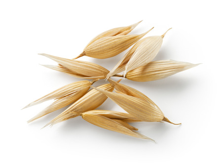 Oat grain isolated on white background. With clipping path. Standard-Bild