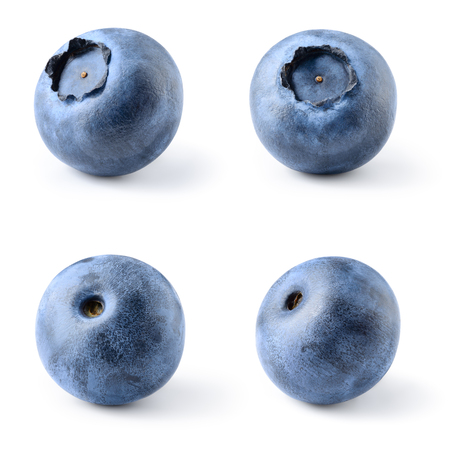 Blueberry. Bilberry. Blueberries isolated on white background. Collection. With clipping path.