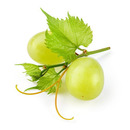 Green grape. Two fresh berries with leaves and tendrils isolated on white. Full depth of field.
