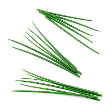 Chives isolated. Young green onion. Set.