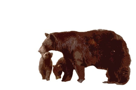 black bear with cubs cutout style standing in front of a white background Stock Photo
