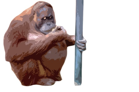 orangutan  in artistic cutout style in front of a white background