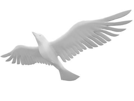 Beautiful white dove flying free on a blank bg photo