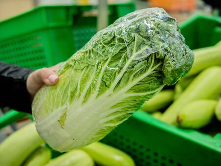 Female buyer chooses a cabbage in the supermarket. Close-up of female hands with Chinese cabbage