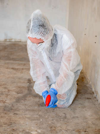 Removing Mold from the floor in the room. Elimination of mold at home. Stok Fotoğraf