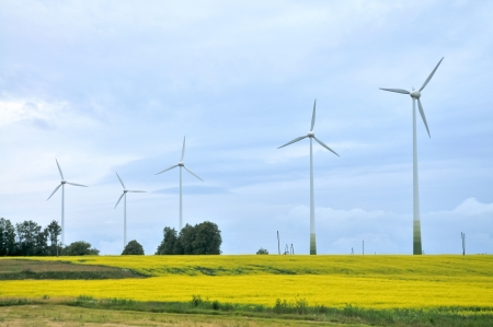 Wind Generators in rapeseed field photo