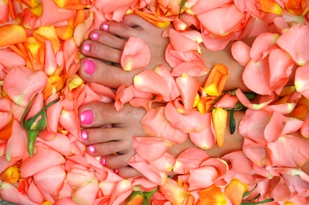 lacquered: lacquered feet nails in rose leaves Stock Photo