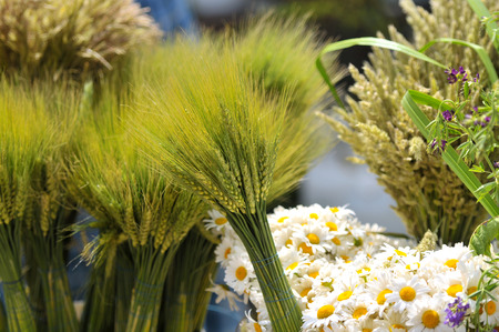 Wheat and daisy in flower market