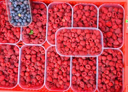 Blueberries and raspberries in plastic box photo