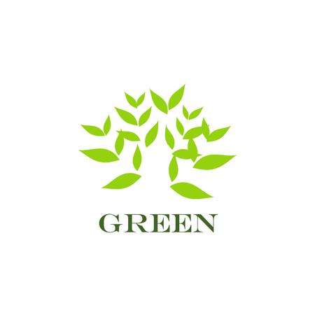 green environment: Green icon, environment concept, Green abstract, vector
