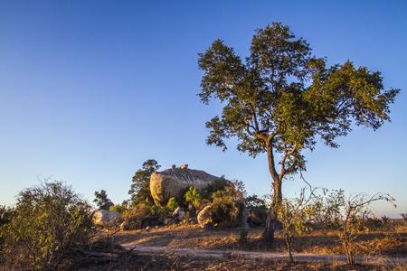 Boulders landscape in Kruger National Park, South Africa;