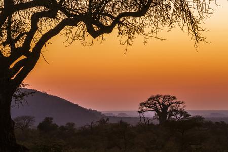 Sunrise landscape 版權商用圖片