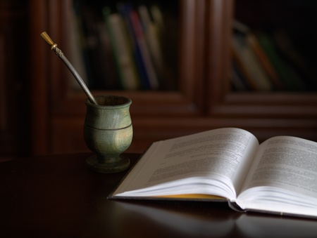 Yerba mate and book for relaxation Stock Photo