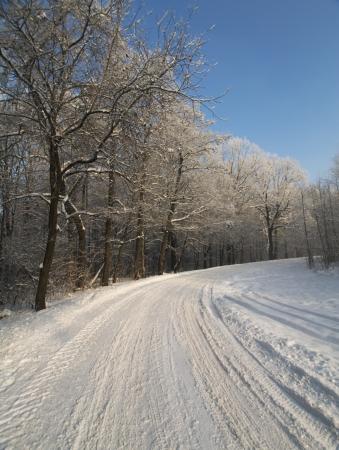 snowbound: Snowbound road in winter Stock Photo