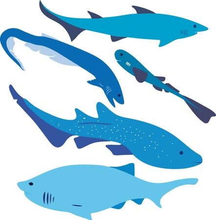 Vector file of five types of shark forms. Ilustracja