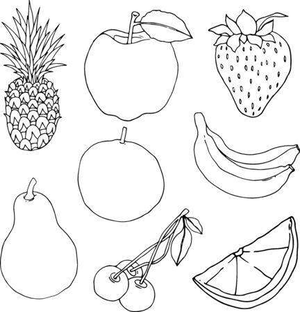 hand drawn fruits linear vector illustration designs.