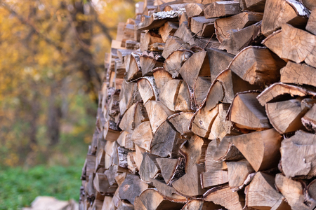 Woodpile. Firewood stacked in a woodpile. Birch wood close up.