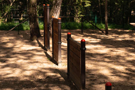 Dog playground in the forest. Various dog training machines among the trees