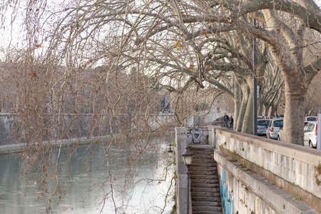 Rome. Italy. Spring 2020. Spring Roman embankments. The branches of plane trees bend over the Tiber River
