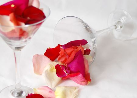 Petals spill from a martini glass and scatter over a white backdrop.