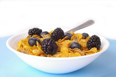 Healthy bowl of whole grain cereal with fresh organic berries. Imagens