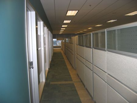 office cubicle: Cubicles