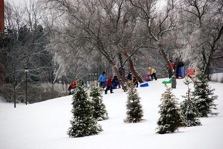 Winter family fun. Sledging downhill.