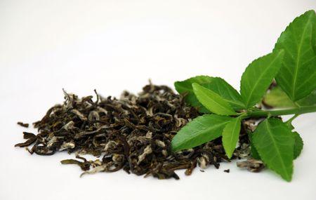 白い背景の上の緑の茶葉します。