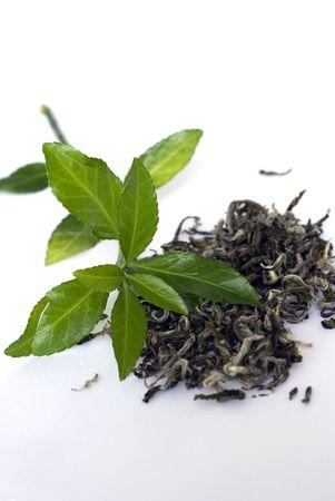 Green tea leaves Standard-Bild