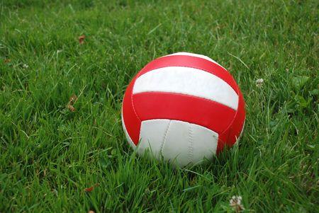 Sport ball over the green grass photo