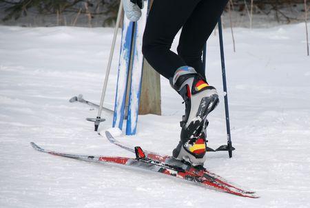 Cross Country Skiing Standard-Bild