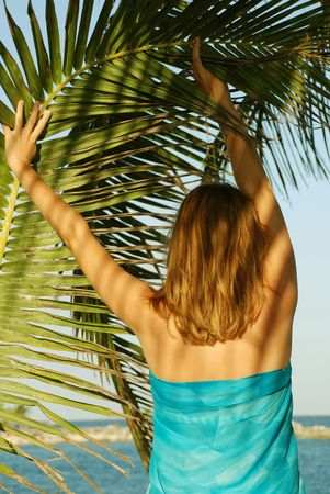 Woman under a palm tree looking at the ocean photo