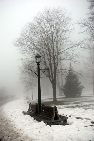 cloudless: Foggy winter day